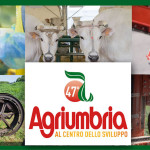 Agriumbria 2015